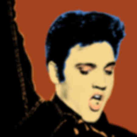 Elvis Presley Pop-Art
